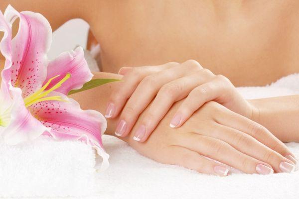 мягкие ухоженные женские руки