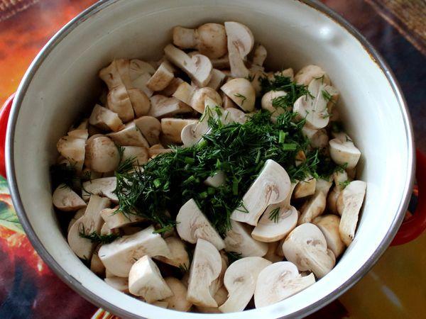 грибы с укропом