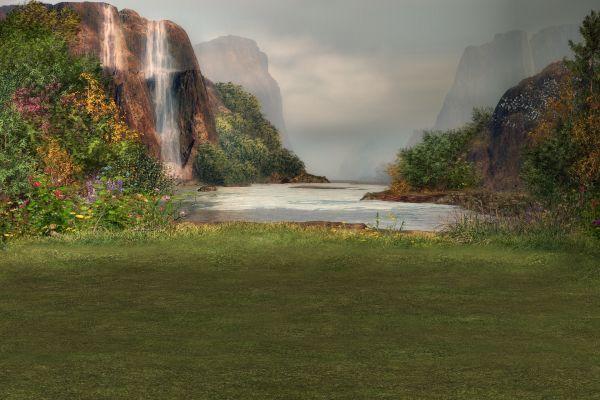 загадки и чудеса природы
