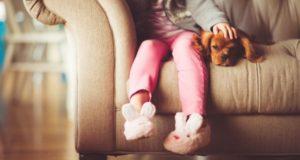 Ребенок просит завести питомца: соглашаться или нет