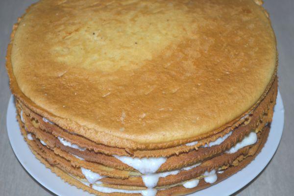 коржи торта