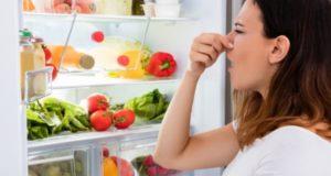 Как удалить запах из холодильника: эффективные средства