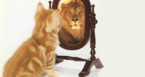 Психологический тренинг для повышения самооценки