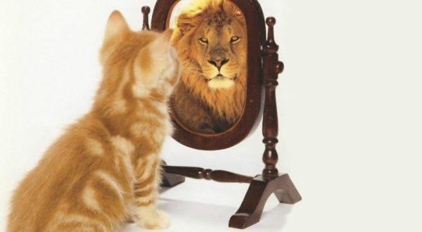 тренинг уверенности в себе