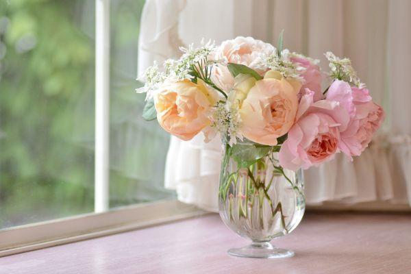 как продлить розам жизнь в вазе