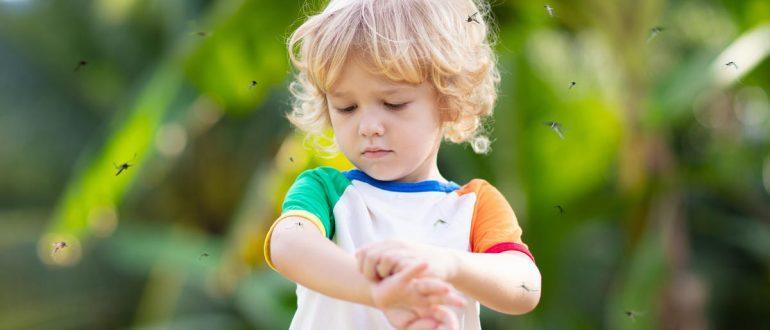 комары и ребенок